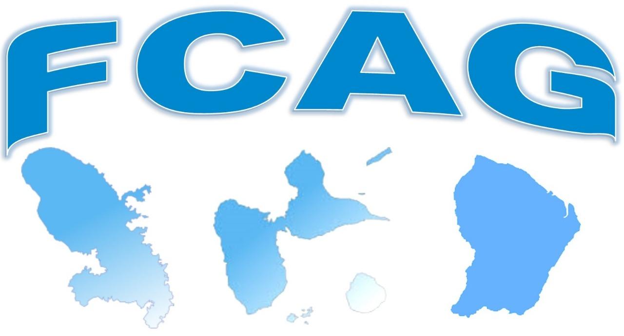 fcag Pro